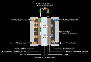 Schematic picture of a fuel cell