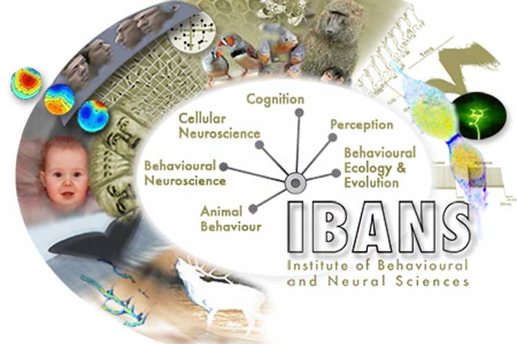 Poster showing areas of research in the Institute of Behavioural and Neural Sciences