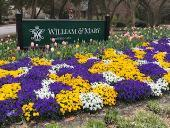 William and Mary sign