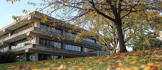 Library in Autumn