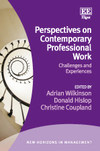 Perspectives on Contemporary Professional Work - cover